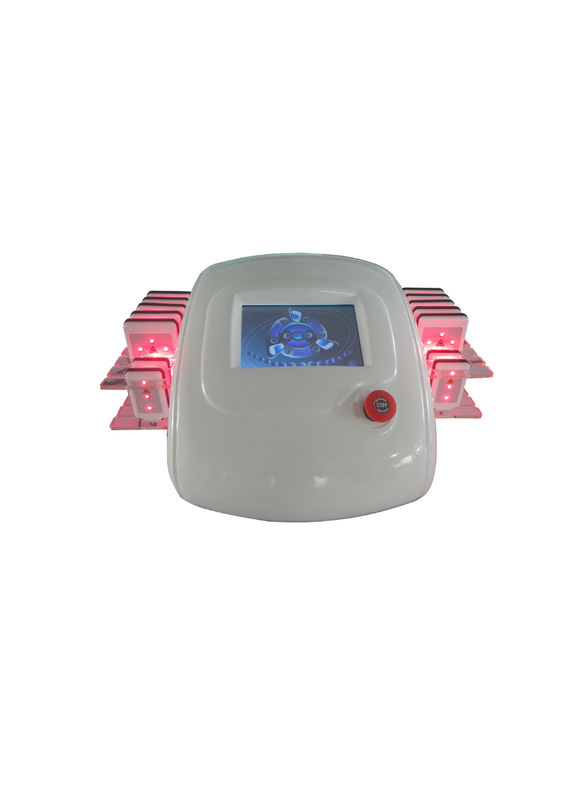 Dual Wavelength Slimming Lipo Cavitation Machine Weight Loss With Touch Screen
