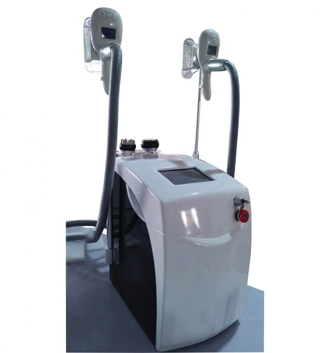 Fat Freezing Machine With 2 Handles For Beauty Salon Slimming Equipment Cryolioplysis